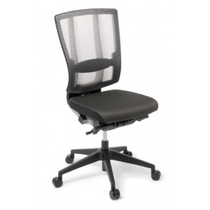 EOS Cloud Ergo Mesh Back Fabric Seat No Arm